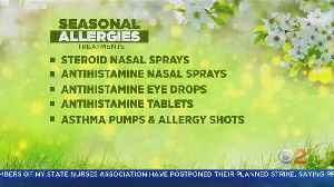 What You Need To Know To Survive The Spring Allergy Season [Video]