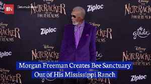 Morgan Freeman Minds His Own Beesness [Video]