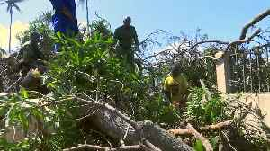 Mozambique starts the clean up after cyclone as death toll spikes [Video]