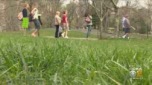 Rough Spring Expected For Allergy Sufferers In Pittsburgh [Video]