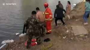Firefighters save woman trapped in car that falls into lake [Video]