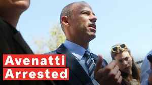 Stormy Daniels' Ex-Lawyer Michael Avenatti Arrested For Extortion, Pro-Trump Twitter Rejoices [Video]