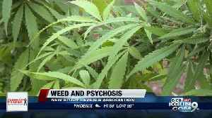 Marijuana use and psychosis, new study associates usage with health risks [Video]