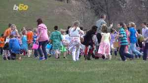 Hop to These Top Easter Egg Hunts Across the Country [Video]