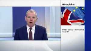Brexit analysis: NHS impact explained [Video]