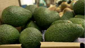 6 States Recall Avocados [Video]