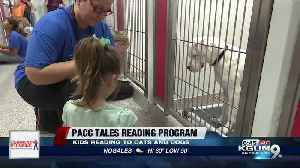 The dual benefit to children reading to shelter animals at PACC [Video]