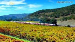 Live Out a 'Murder' On This Napa Valley Wine Train [Video]