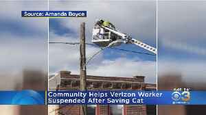 Community Helps Verizon Worker Who Was Suspended After Saving Cat [Video]