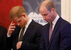 Prince William and Harry Are Reportedly Feuding [Video]