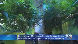N.J. Lawmakers Cancelled Monday's Vote To Legalize Recreational Marijuana [Video]