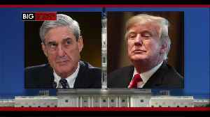 News video: Michigan lawmakers react to Mueller investigation findings