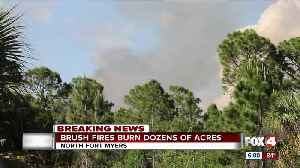Growing brush fire in North Fort Myers [Video]