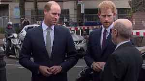 What Is The issue Between Prince Harry And Prince William [Video]