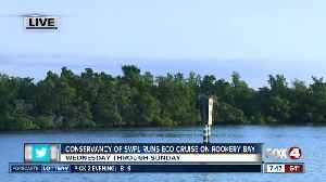 Conservancy of Southwest Florida runs eco-cruises out of Rookery Bay - 7:30am live report [Video]
