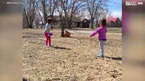 Sisters get upset over not playing well [Video]