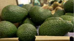 California Avocados Recalled