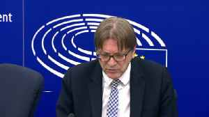 Guy Verhofstadt hails 'Brexit revolt' in UK [Video]