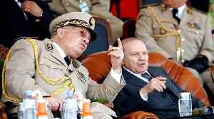 After army declares Bouteflika unfit, what's next for Algeria? [Video]
