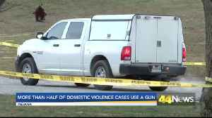 More Than Half of Domestic Violence Cases in Indiana Involve a Gun [Video]