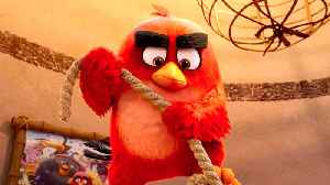 The Angry Birds Movie 2 - Official International Trailer [Video]