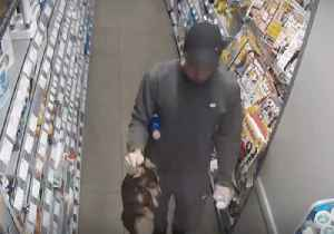 Animal Cruelty Organization Seeks Man Caught on Store CCTV Carrying Dog by the Neck [Video]
