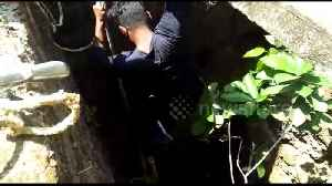 Rescuer risks his life to save deadly snake from dying in well [Video]