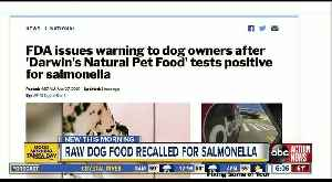 FDA issues warning to dog owners after 'Darwin's Natural Pet Food' tests positive for salmonella [Video]