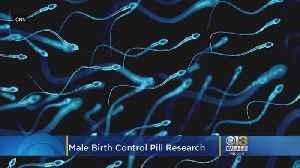 New 'Male Birth Control' Pill Might Be Safe, But There's Still A Long Way To Go, Researchers Say [Video]
