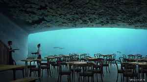 Europe's First Underwater Restaurant Is Terrifying and Beautiful [Video]