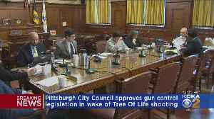 Pittsburgh City Council Gives Tentative Approval To Gun Legislation [Video]