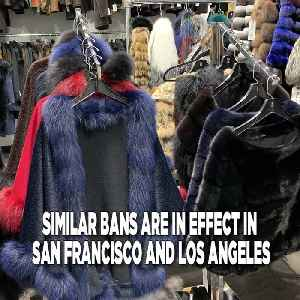 Fur Sale Ban Coming To New York? [Video]