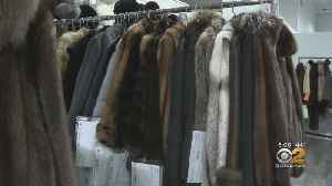NYC Speaker Proposes Ban On Fur [Video]