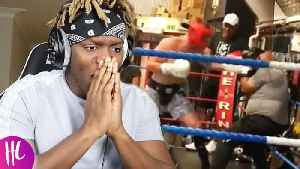 Logan Paul Destroys Opponents In New Boxing Match   Hollywoodlife [Video]