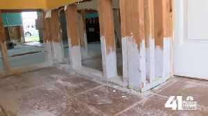 Receding floodwaters cause growing concern for mold [Video]