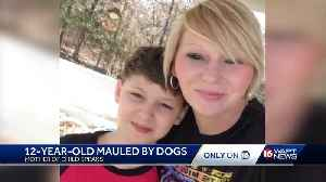 Boy mauled by dogs out of coma [Video]