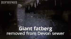 Workers remove huge fatberg from under Devon town [Video]