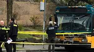 Bus Driver Hailed as Hero After Seattle Shooting [Video]