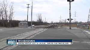 Man says he waited for more than 2 hours at train crossing in Woodhaven [Video]