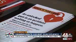 Grandparents use wisdom, time in effort to reduce gun deaths [Video]