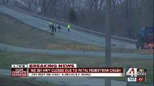 At least 1 person dead following pedestrian-involved crash on 291 Highway [Video]