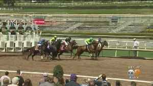 Amid Protests, Santa Anita Race Track Reopens For Business [Video]