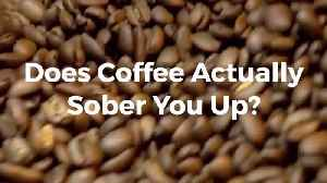Drinking Coffee To Get Sober May Be An Old Wives Tale [Video]