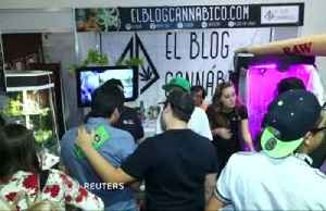 Marijuana goes mainstream at Mexico City festival [Video]
