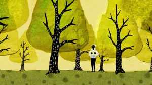 How trees secretly talk to each other [Video]