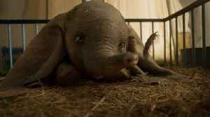 Disney's 'Dumbo' Falls Behind Box Office Expectations [Video]