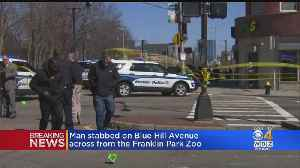 Daytime Stabbing In Dorchester Leaves Man With Serious Injuries [Video]