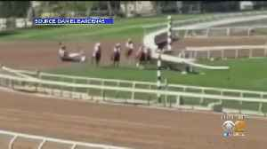 Thursday Race Will Go On As Planned Even After 23rd Horse Dies At Santa Anita Park [Video]