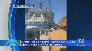 Royal Caribbean Cruise Ship Docked In Grand Bahamas Hit By Falling Crane [Video]