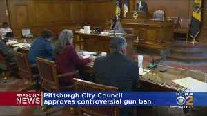 Pittsburgh City Council Approves Controversial Gun Legislation [Video]